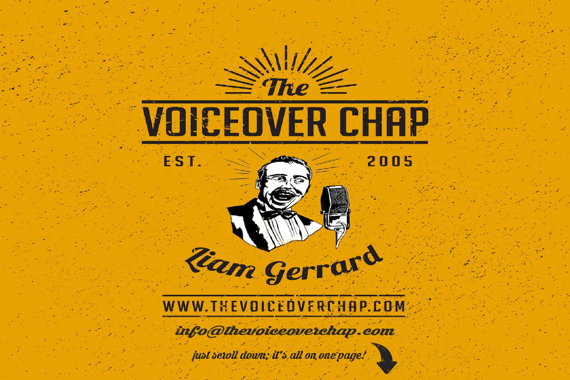 main-pic-voiceoverchap-web3